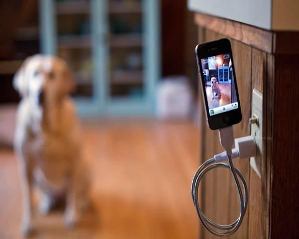 stiff-iphone-cable