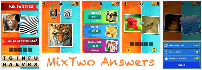 level-2-mix-two-answers